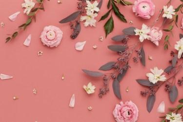 desktop beige aesthetic wallpapers wallpaperaccess backgrounds pink