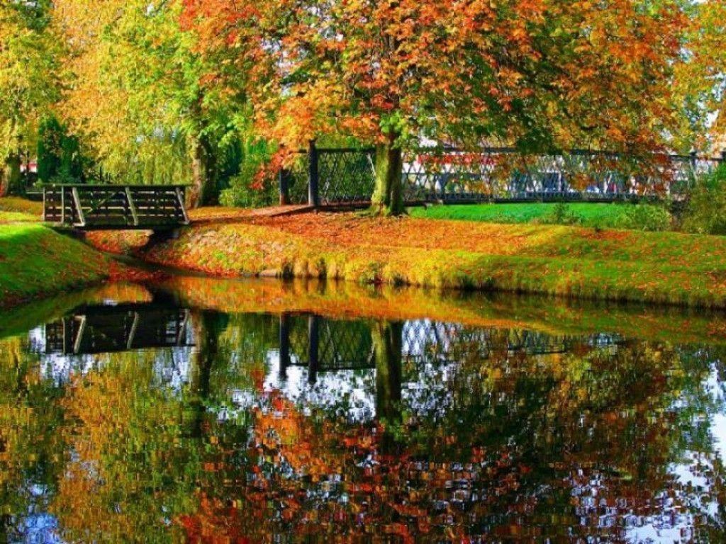 free autumn screensavers wallpapers