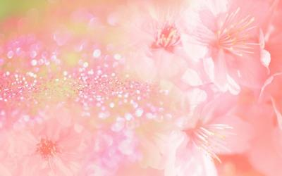 Pink Flower Wallpaper Backgrounds Wallpaper Cave