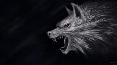 wolf dark wallpapers hd camo