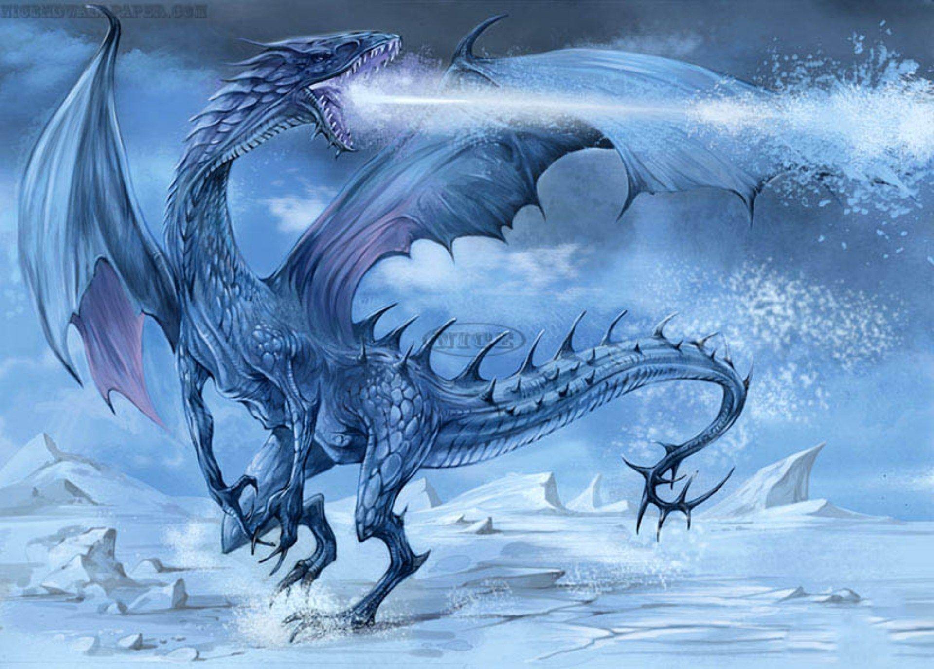 ice dragon wallpapers wallpaper