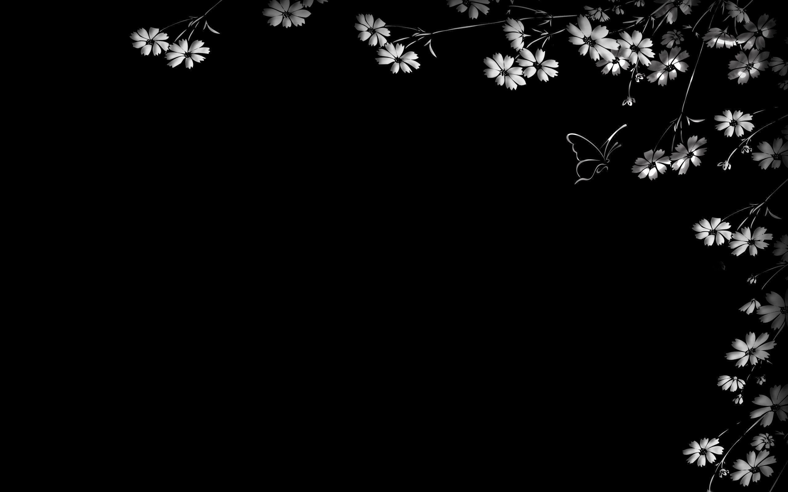black backgrounds wallpapers wallpaper