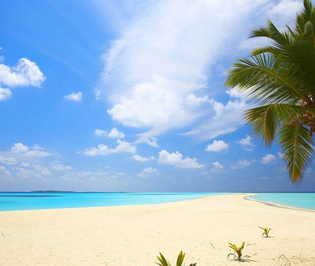 Beach Backgrounds Pictures Wallpaper Cave