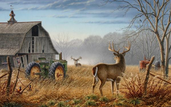 Free Deer Hunting Desktop Wallpaper