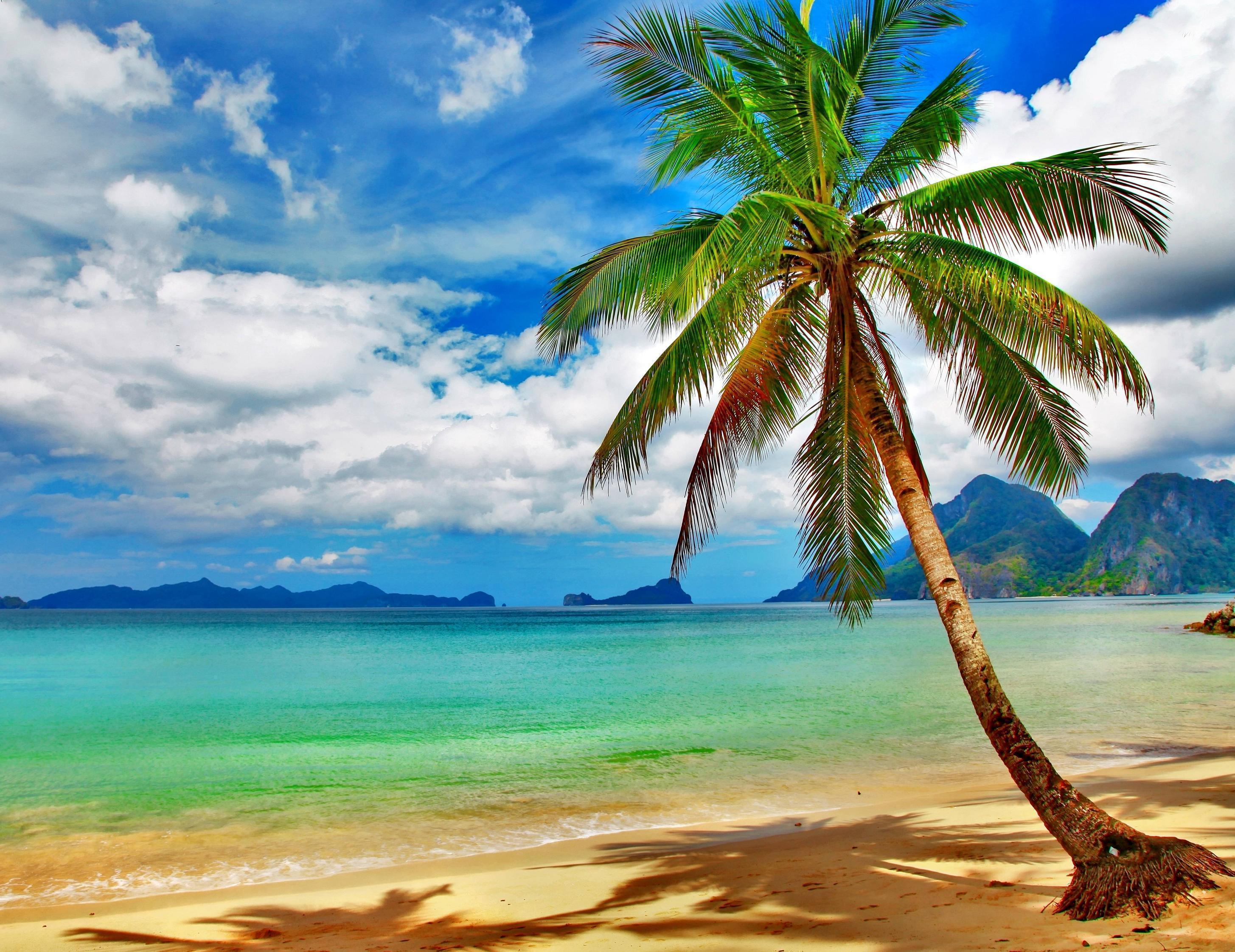 Tropical Beach Wallpapers Desktop Wallpaper Cave Download Stunning