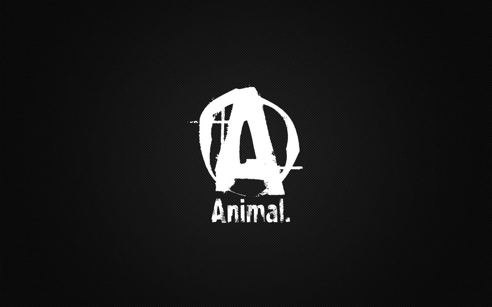 Animal Pak Quotes Wallpaper Animal Pak Wallpapers Wallpaper Cave