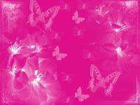 Pink Colour Backgrounds - Wallpaper Cave