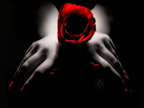 Art Gothic Black Roses Wallpaper