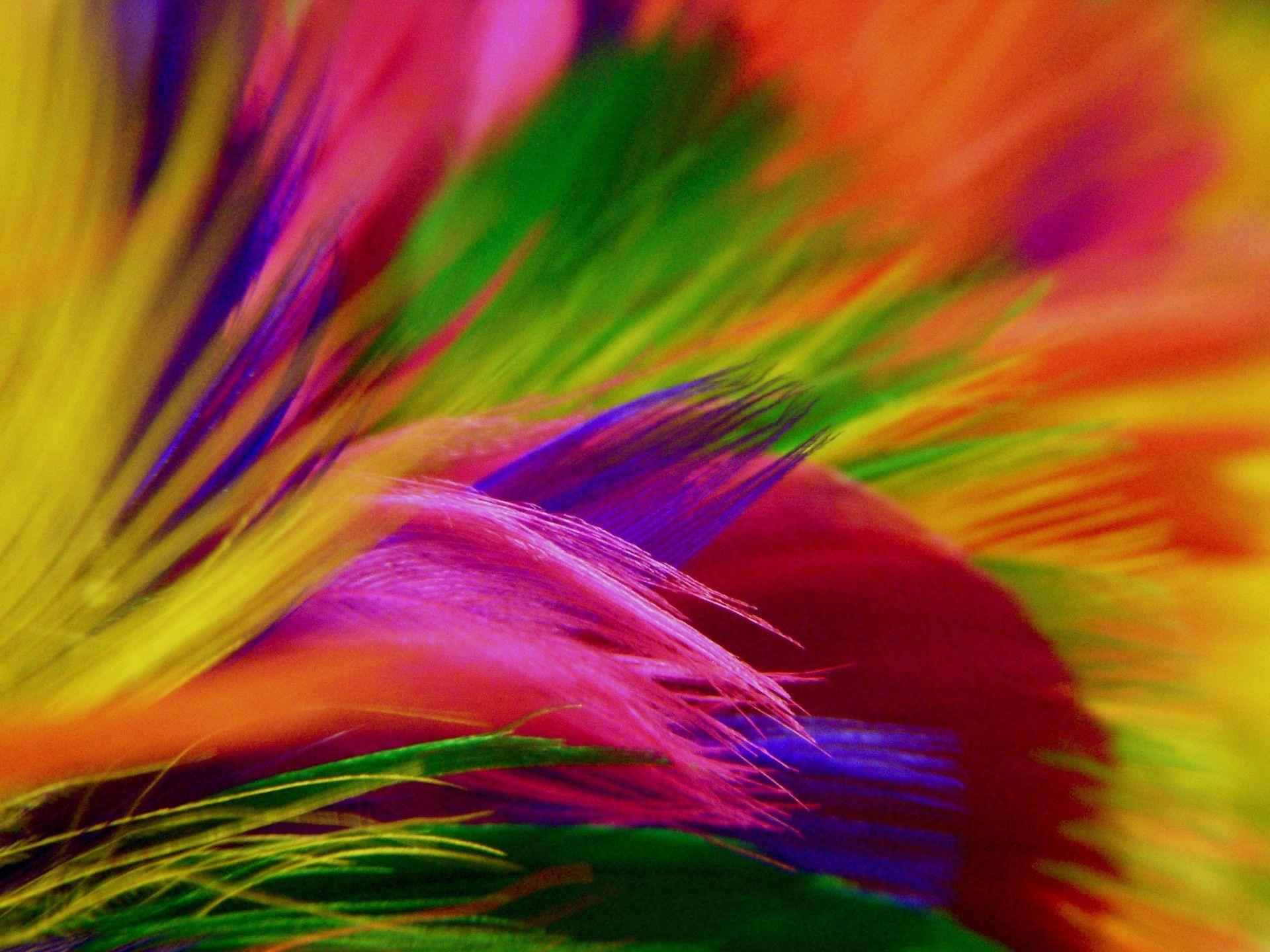 colorful hd backgrounds wallpaper