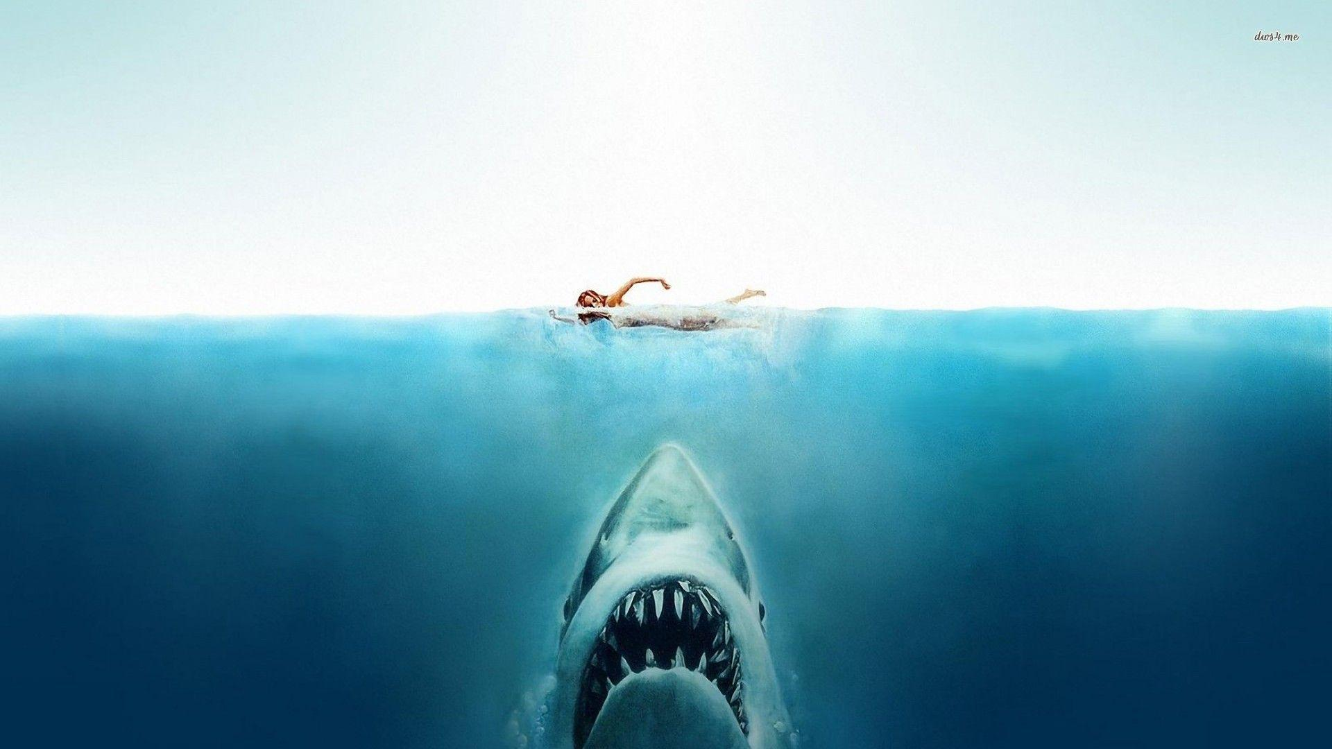 Image result for jaws wallpaper