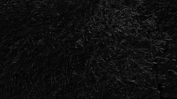 Black Backgrounds Image Wallpaper Cave