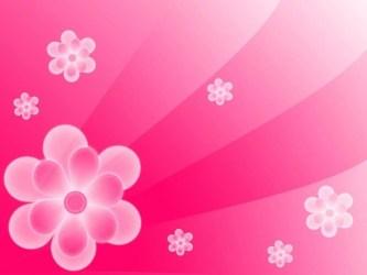 Flower Pink Backgrounds Wallpaper Cave