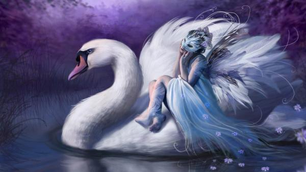 Beautiful Fairies and Swans