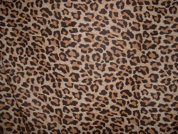 Cheetah Print Desktop Background