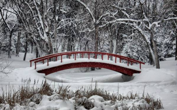 Winter Wonderland Bridge