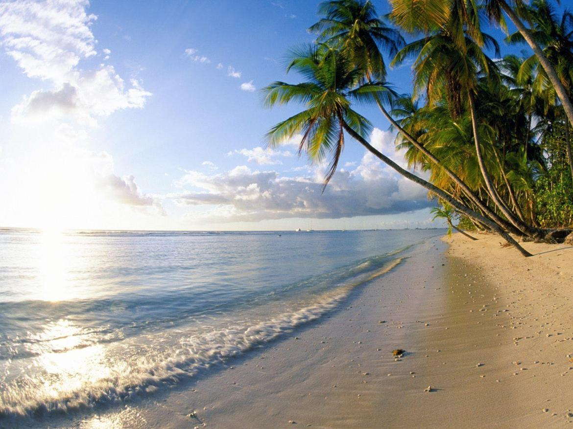 1250 Beach Wallpapers | Beach Backgrounds Page 7
