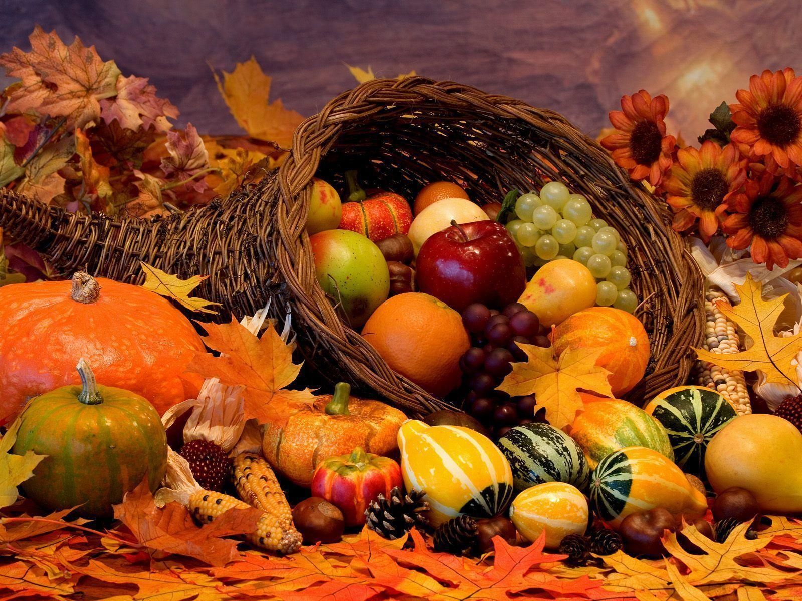 Awesome Fall Wallpapers Fall Themed Wallpapers Desktop Wallpaper Cave
