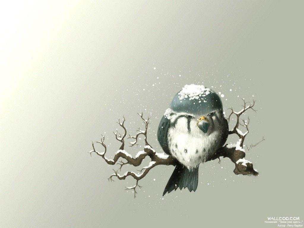 Fall Owl Wallpapers Free Owl Wallpapers Wallpaper Cave