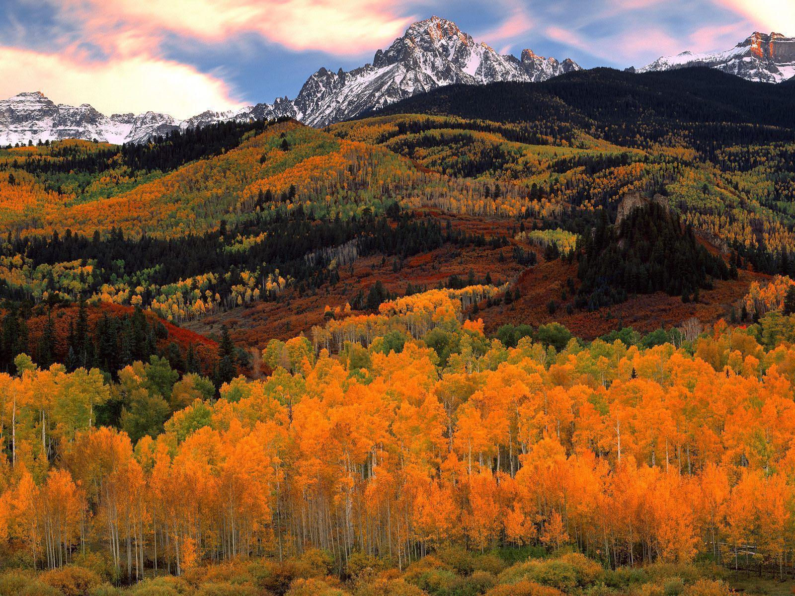 National Geographic Wallpaper Fall Foliage Nature Backgrounds For Mac Wallpaper Cave