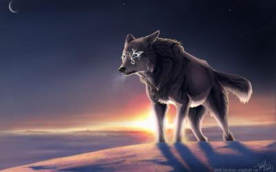 Anime Wolf Wallpaper