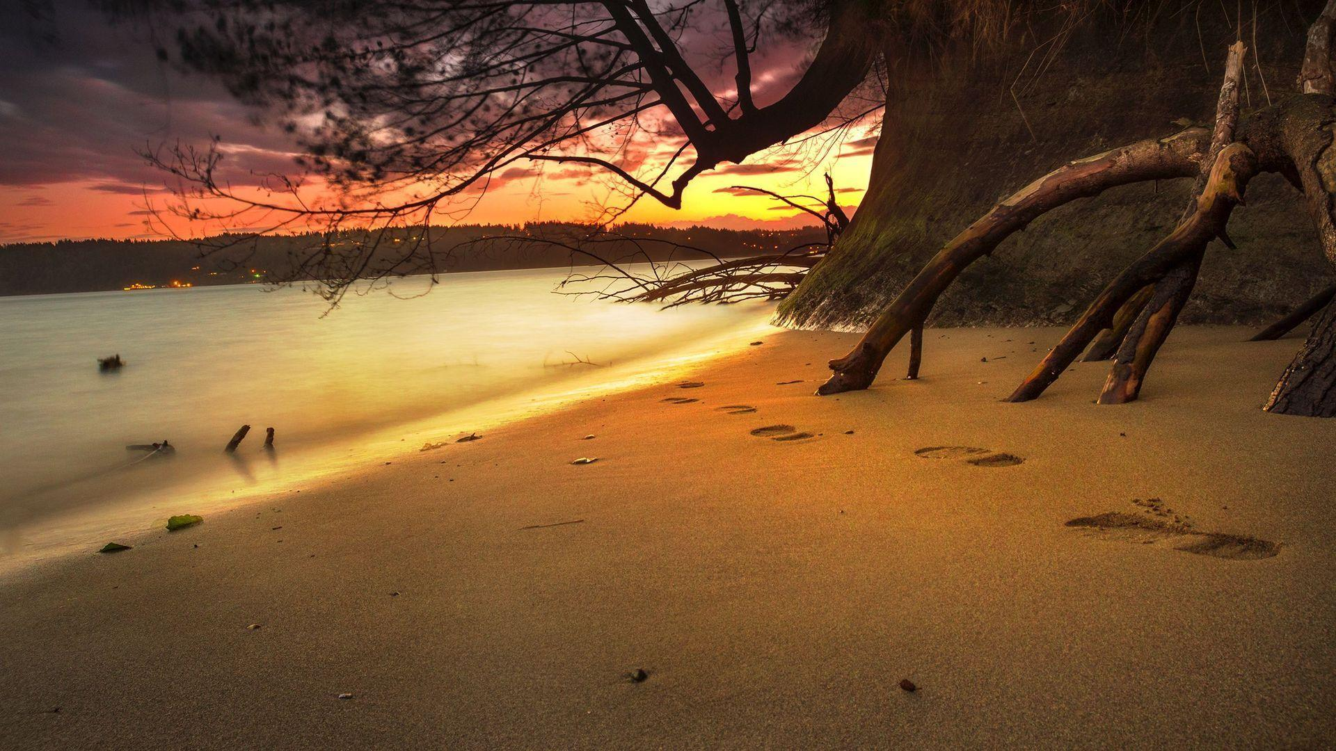 Christian Hd Wallpapers For Android Footprints In The Sand Wallpapers Wallpaper Cave