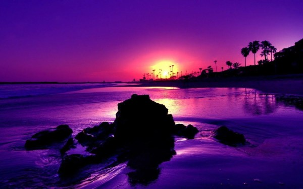 Amazing Purple Beach Sunset