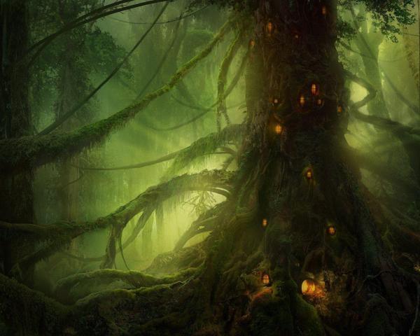 Elves Wallpapers - Wallpaper Cave