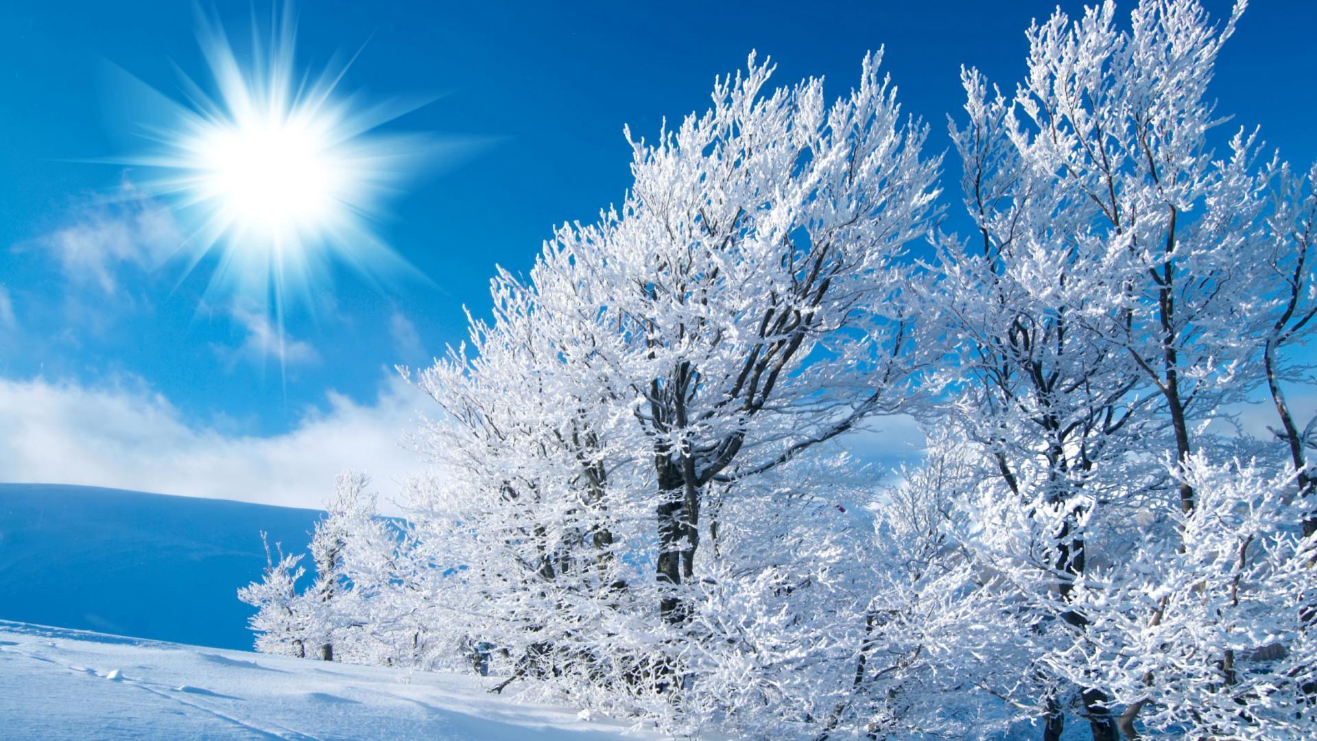 Free Winter Wallpapers For Desktop  Wallpaper Cave