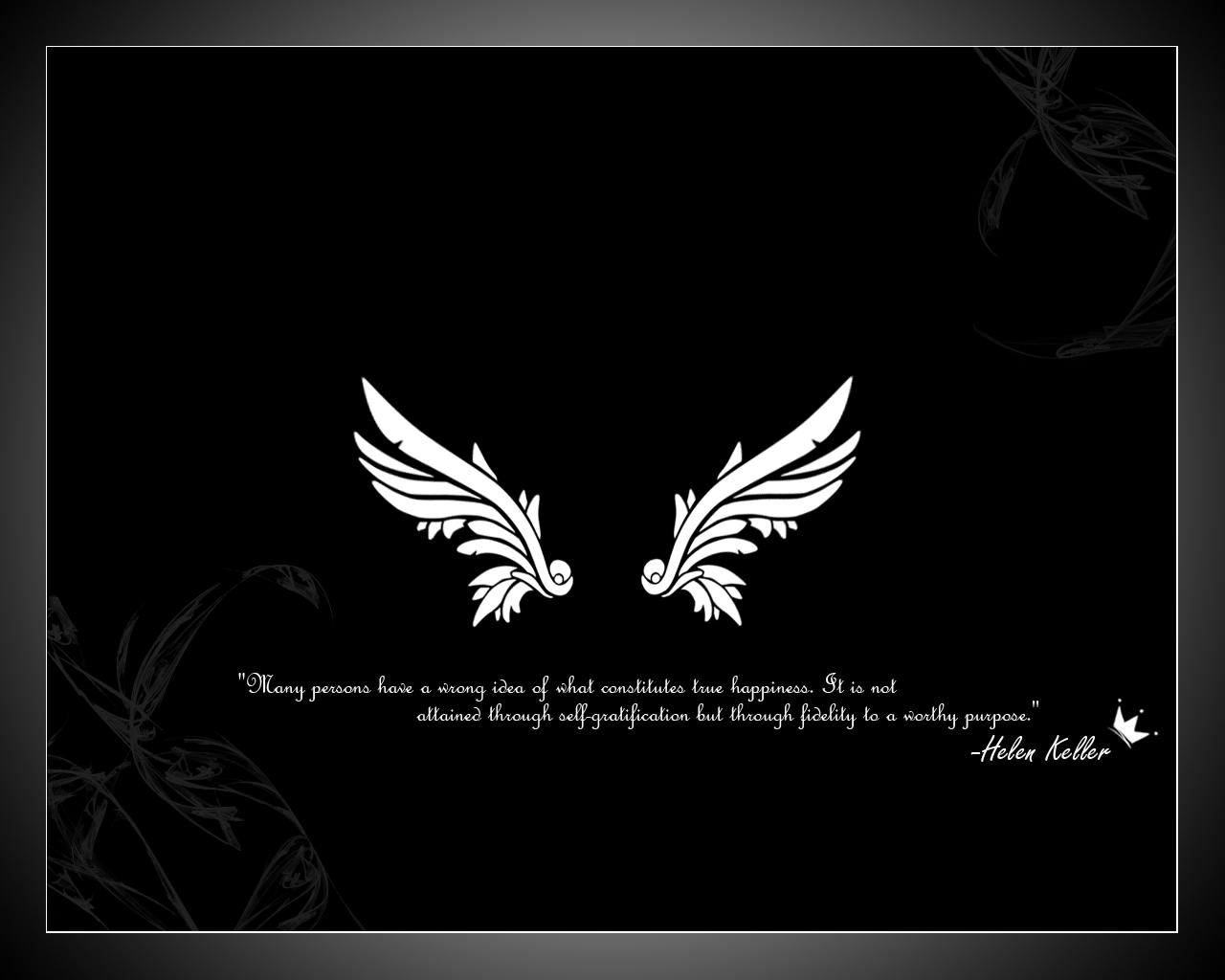 angel wings wallpapers wallpaper