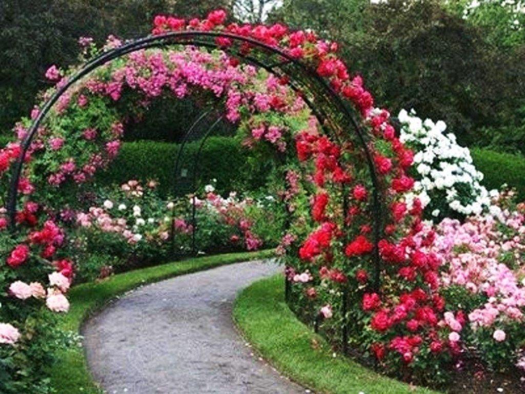 Garden Eden Decoration Ideas