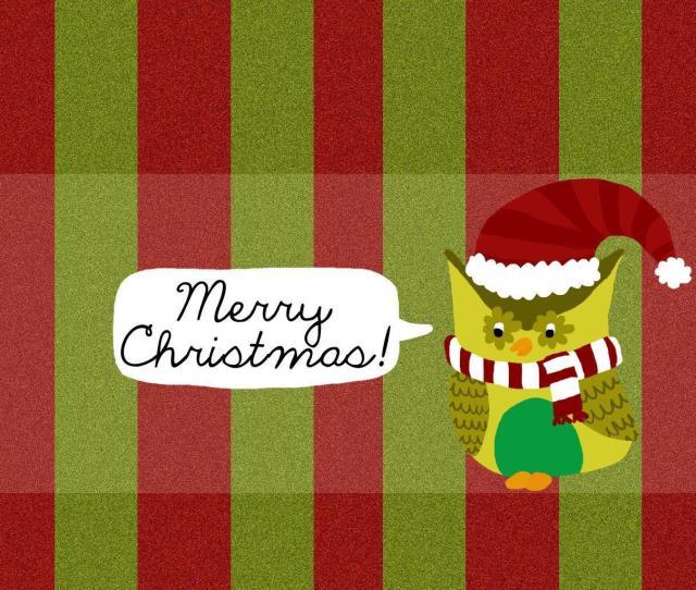 Christmas Owl Wallpaper Free Desktop  Hd Wallpapers Animg Com