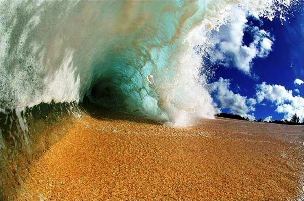 Clark Little Waves of Hawaii