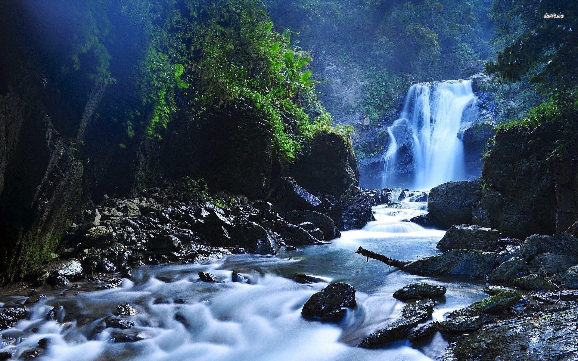 Zen 3d Wallpaper Forest Waterfall Wallpapers Wallpaper Cave
