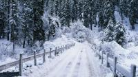 Snow Falling Backgrounds - Wallpaper Cave