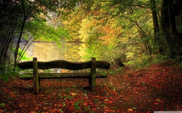 Nature Desktop Backgrounds Fall Scenes