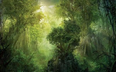 Forest Fantasy Wallpaper