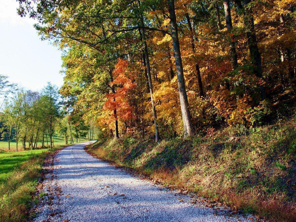 Fall Leaves And Pumpkins Wallpaper Free Desktop Wallpapers Fall Scenes Wallpaper Cave