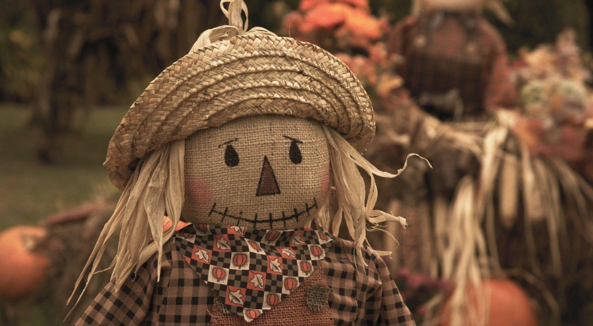 Fall Harvest Wallpaper Images Scarecrow Wallpapers Wallpaper Cave
