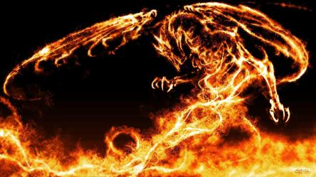 fire dragon wallpapers dragons