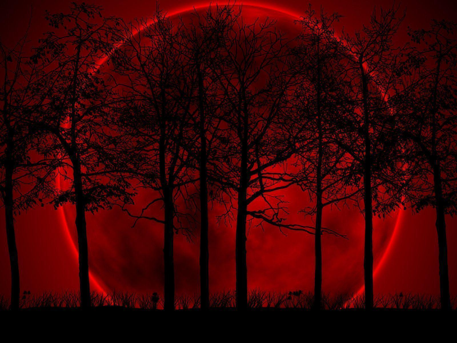 Red And Black Wallpapers HD  Wallpaper Cave