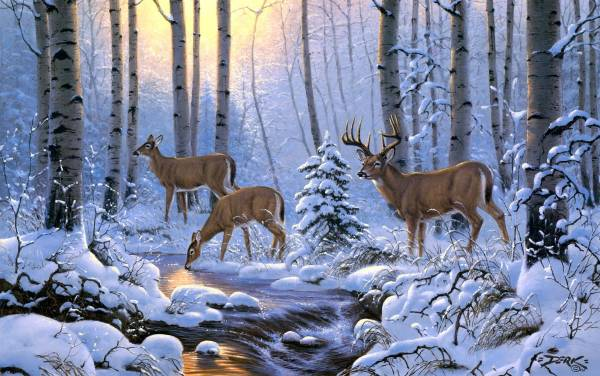 Desktop Winter Scenes with Deer