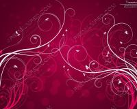 Maroon Colour Backgrounds