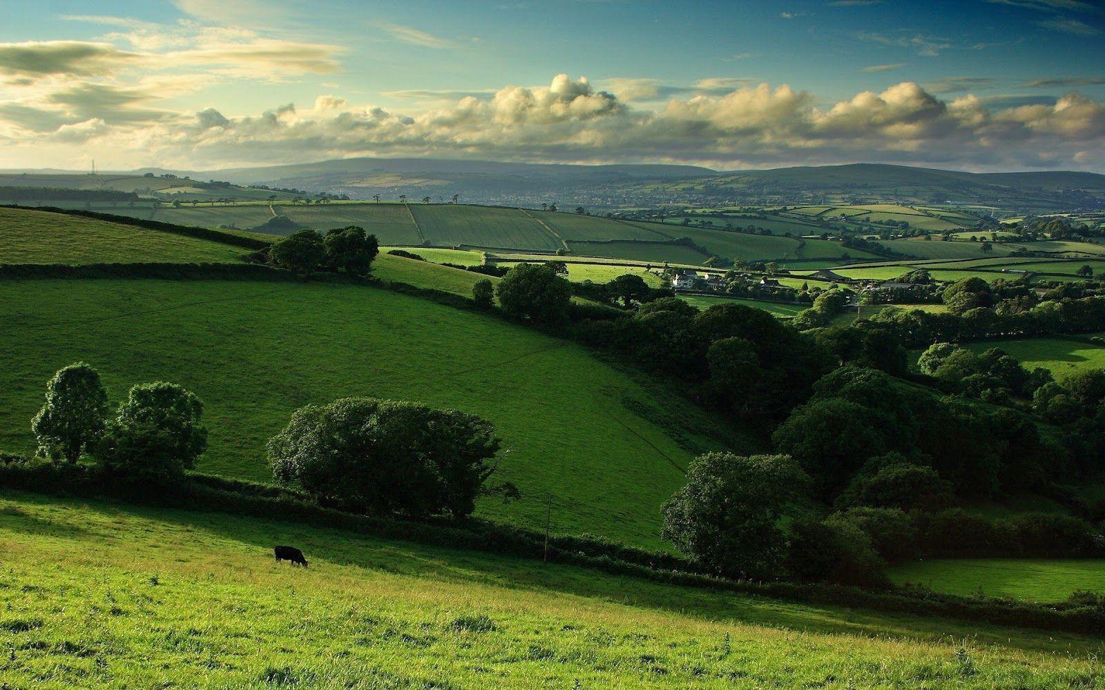 Irish Countryside Wallpapers  Wallpaper Cave
