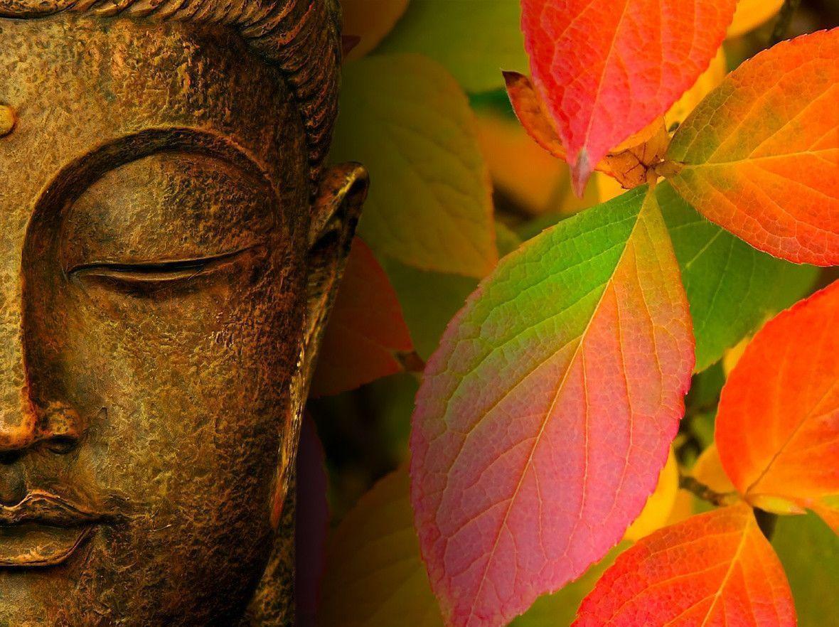 Free Fall Images Desktop Wallpaper Buddhist Backgrounds Wallpaper Cave