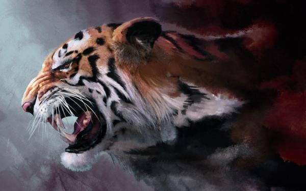 20 Tiger Desktop Wallpaper Pictures And Ideas On Meta Networks