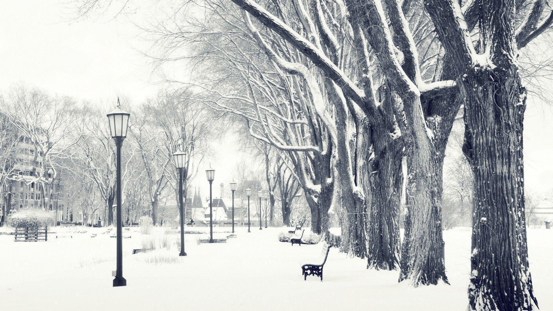 Paesaggi Invernali Tumblr