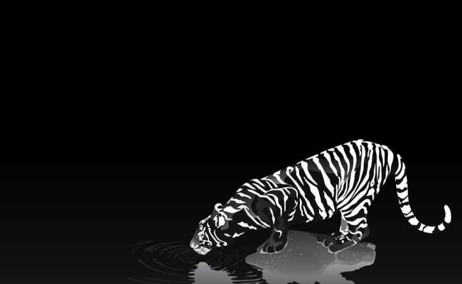 Hd Wallpapers Black And White Wallpaper Cave