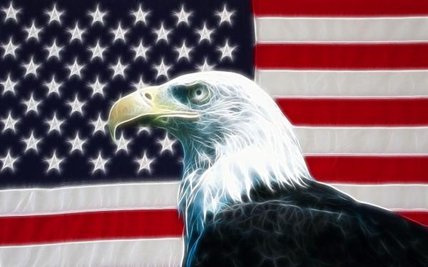 USA Eagle with American Flag Wallpaper