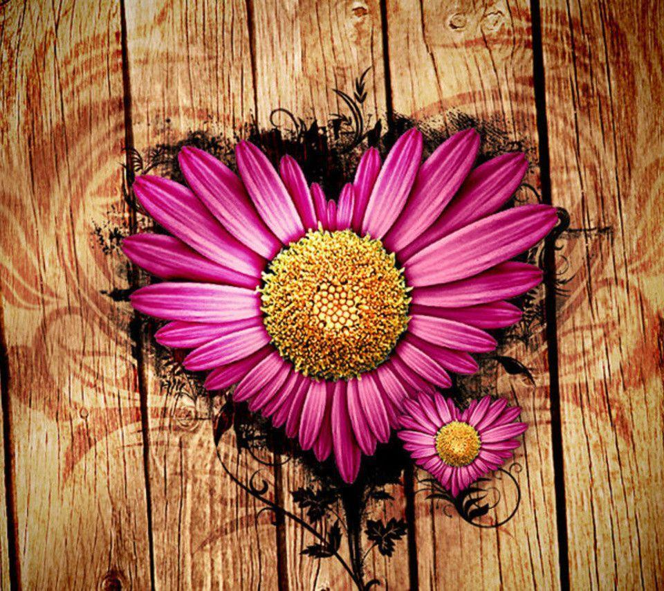Cute Pink Wallpaper For Phone Pink Daisy Wallpapers Wallpaper Cave