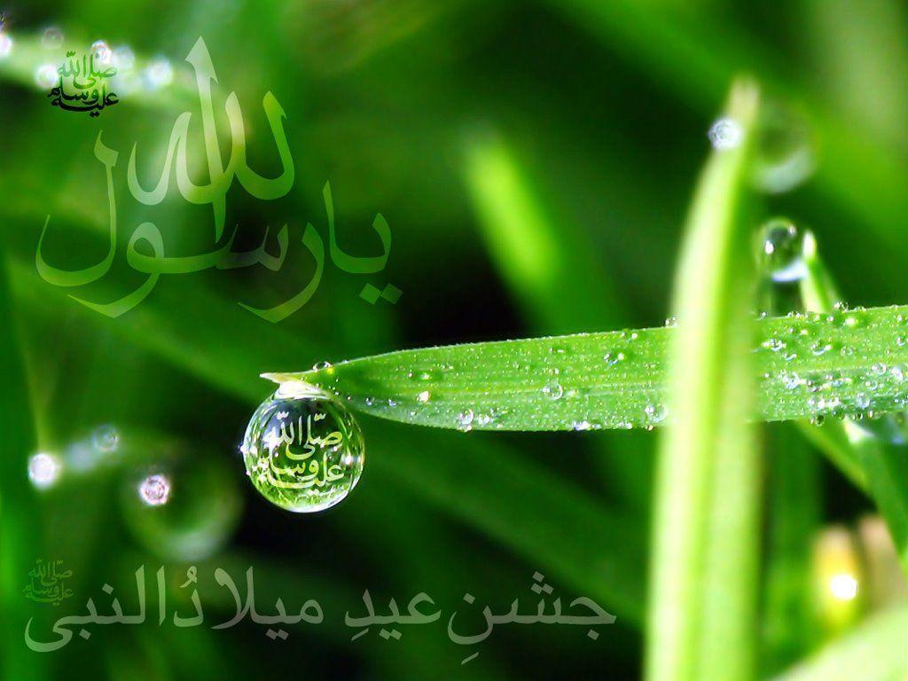 Beautiful Wallpapers With Quotes In Urdu Pak Flag Wallpapers 2015 Wallpaper Cave